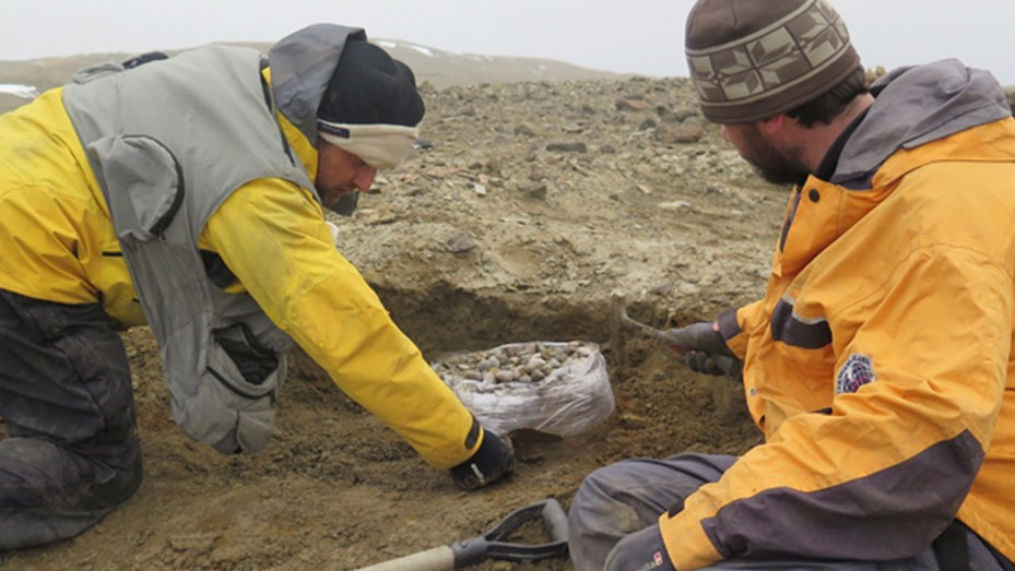 """Hallaron restos de un reptil gigante en la Antártida similar al """"Monstruo del Lago Ness"""" Antartidaness"""