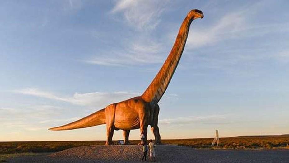Hallan restos fósiles de un Titanosaurio en Neuquén: cada vértebra pesaba  200 kilos - Telefe Neuquén