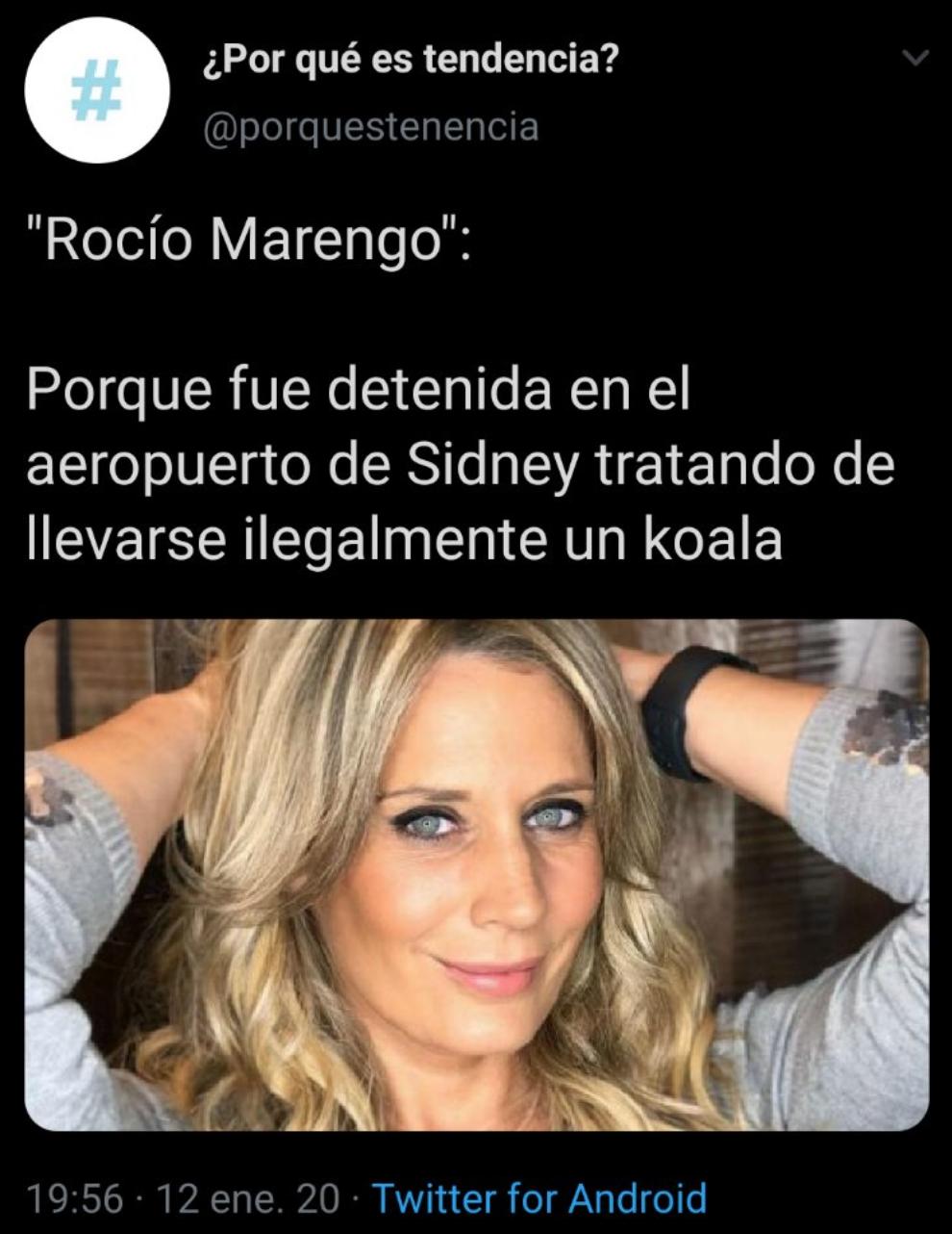Rocío Marengo acusada de robar un koala de Australia: ¿qué pasó?